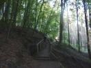 Rodalber Felsenweg 2012