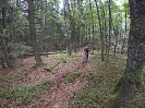 Heidis Holy Trails 2013